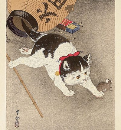Cat-Catching-Mouse
