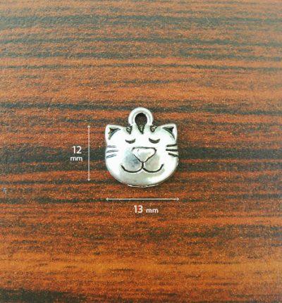 accessories-cat